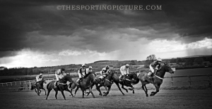 FINE ART THE SPORTING PICTURE 035ML