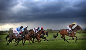 FINE ART THE SPORTING PICTURE 036ML