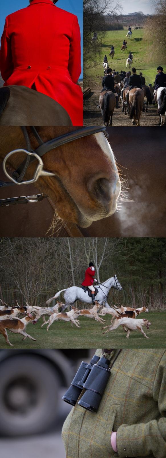 Fox Hunt Photography 4