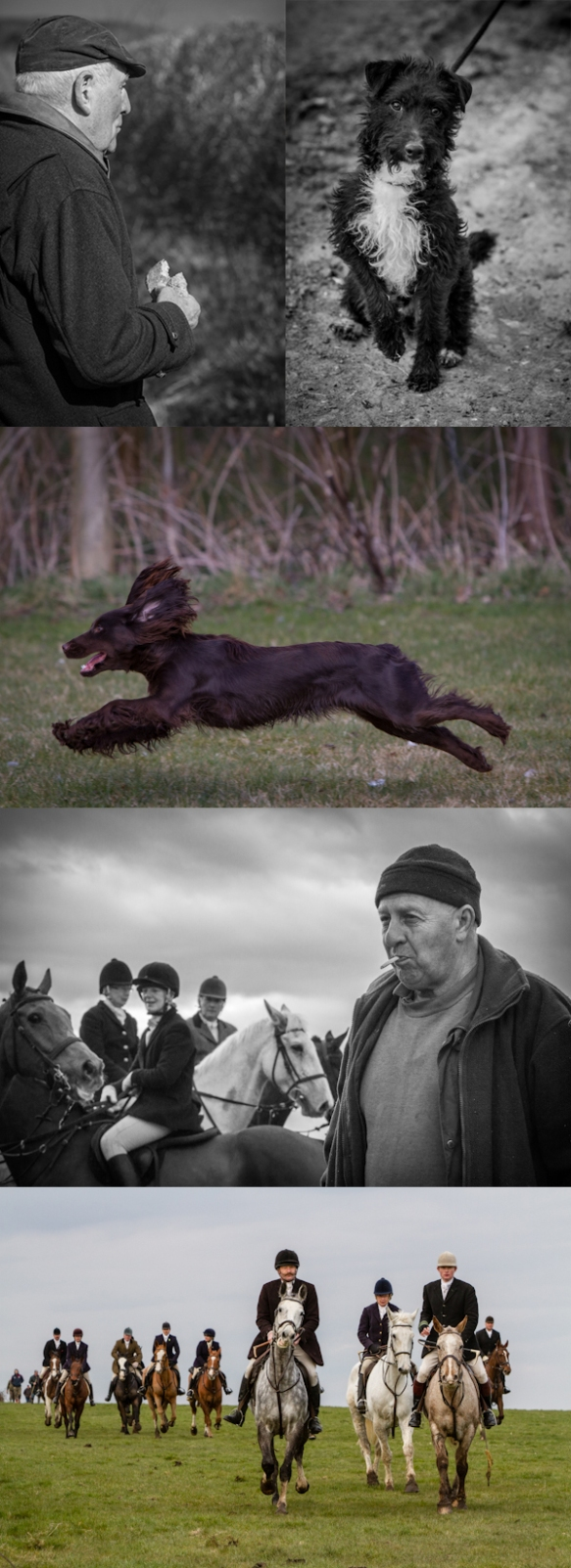 Fox Hunting Photography 3